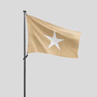 Govaere vlag v1 lores